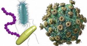 virus bacteria 300x159 شوت زباله | پیشگیری از بیماری